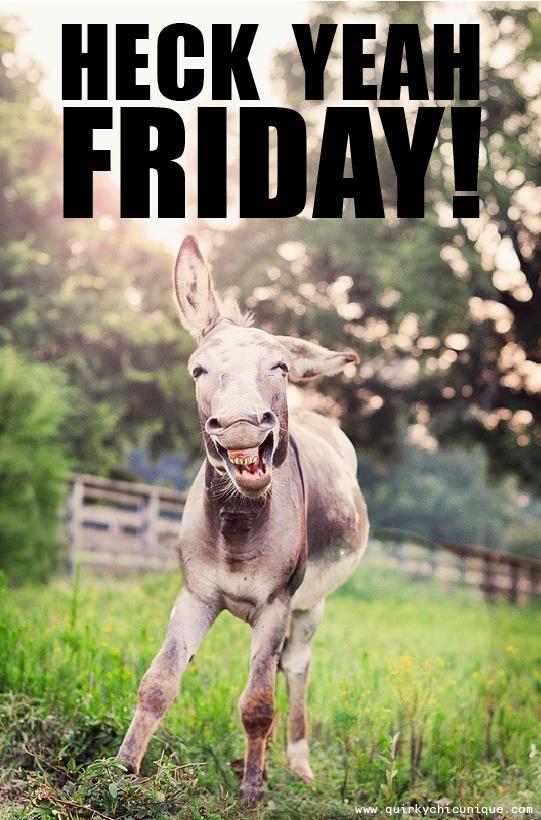 f7b472222341ba6ee31350d1ba9350d2--quotes-friday-friday-humor